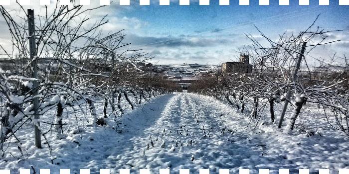 Araus Ballesteros... el frío en Arlanza!