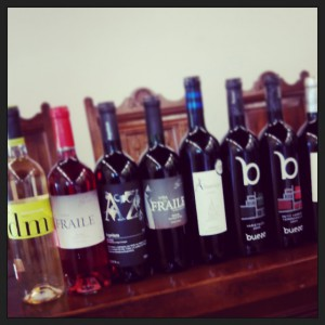 Plantel de vinos en Covarrubias