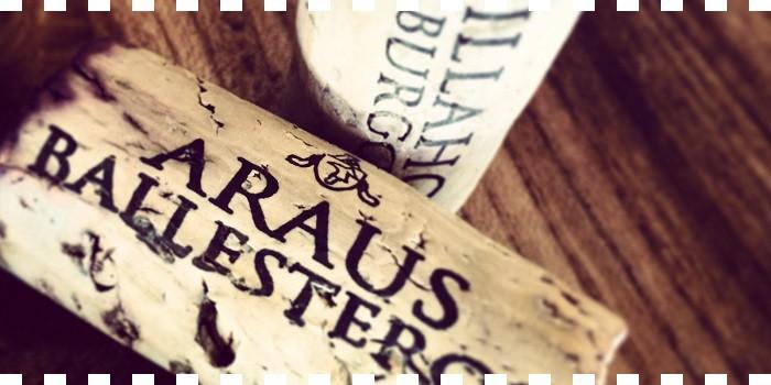 Araus Ballesteros ...en DeliciasBurgos