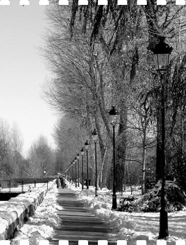 premiado-burgos4estaciones-invierno-2015